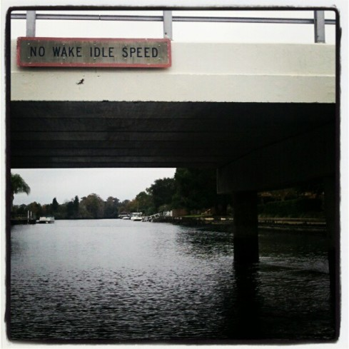 The canals/waterways off of King's Bay are all idle speed, to protect the manatees that live there.