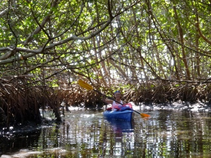 September riding the current in the mangrove tunnel